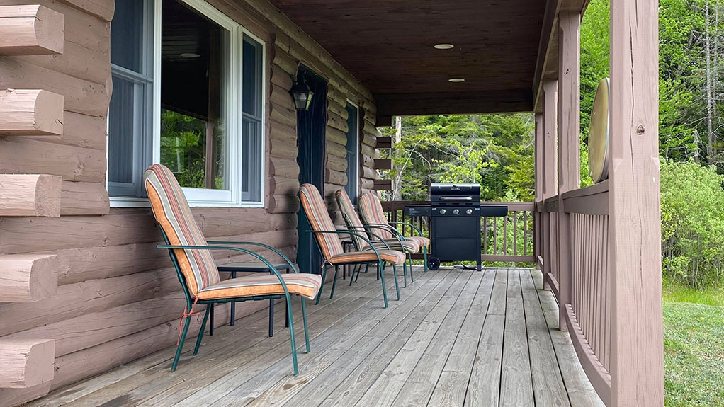 Cabin exterior 2020-1